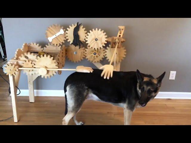 Automatic Dog Petter || ViralHog