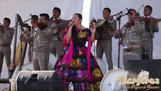 EL SEÑOR DE LAS CANAS   MaryCruz y Mariachi El Gallo de Oro de Tlaxcala