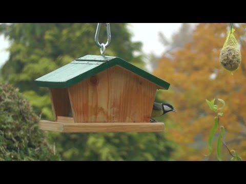 vogelhaus bauanleitung vogelh uschen selber bauen doovi. Black Bedroom Furniture Sets. Home Design Ideas