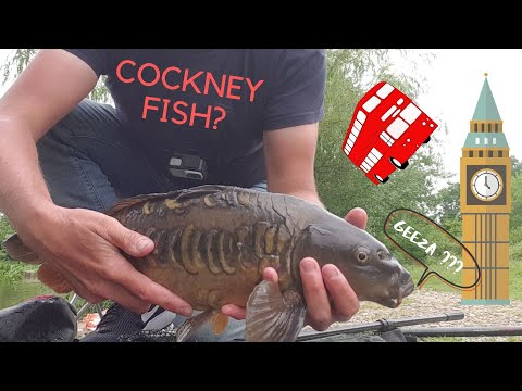 Fishing In London - The Carp Lake Again