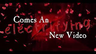 A WHITESNAKE VIDEO EVENT!!! FEB 14th VALENTINE'S DAY 2019!!! (2)