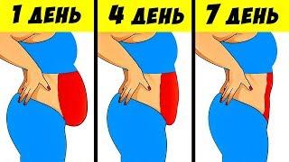 Как сбросить до 8 кг за неделю: ПОШАГОВЫЙ План ПОХУДЕНИЯ! Живот ВТЯНУЛСЯ за 5 дней, БОКА — за 7...