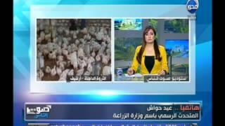 الزراعة : لم تثبت حتى الآن إصابة بإنفلونزا الطيور في مصر