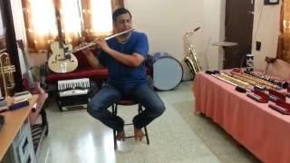 sj prasanna playing Ye lal rang on 4 different instruments (09243104505- Bengaluru)