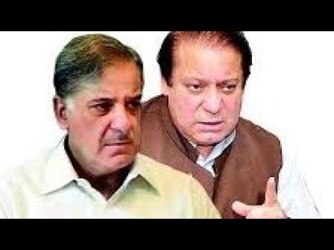 PML n pashto song amir muqam
