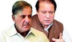 #pmln #love PML n pashto song amir muqam