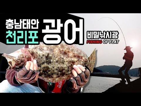 태안 광어루어낚시와 지그헤드액션