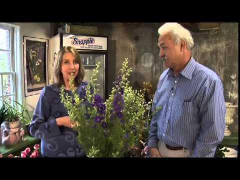 Master Gardening:  Flower Arranging