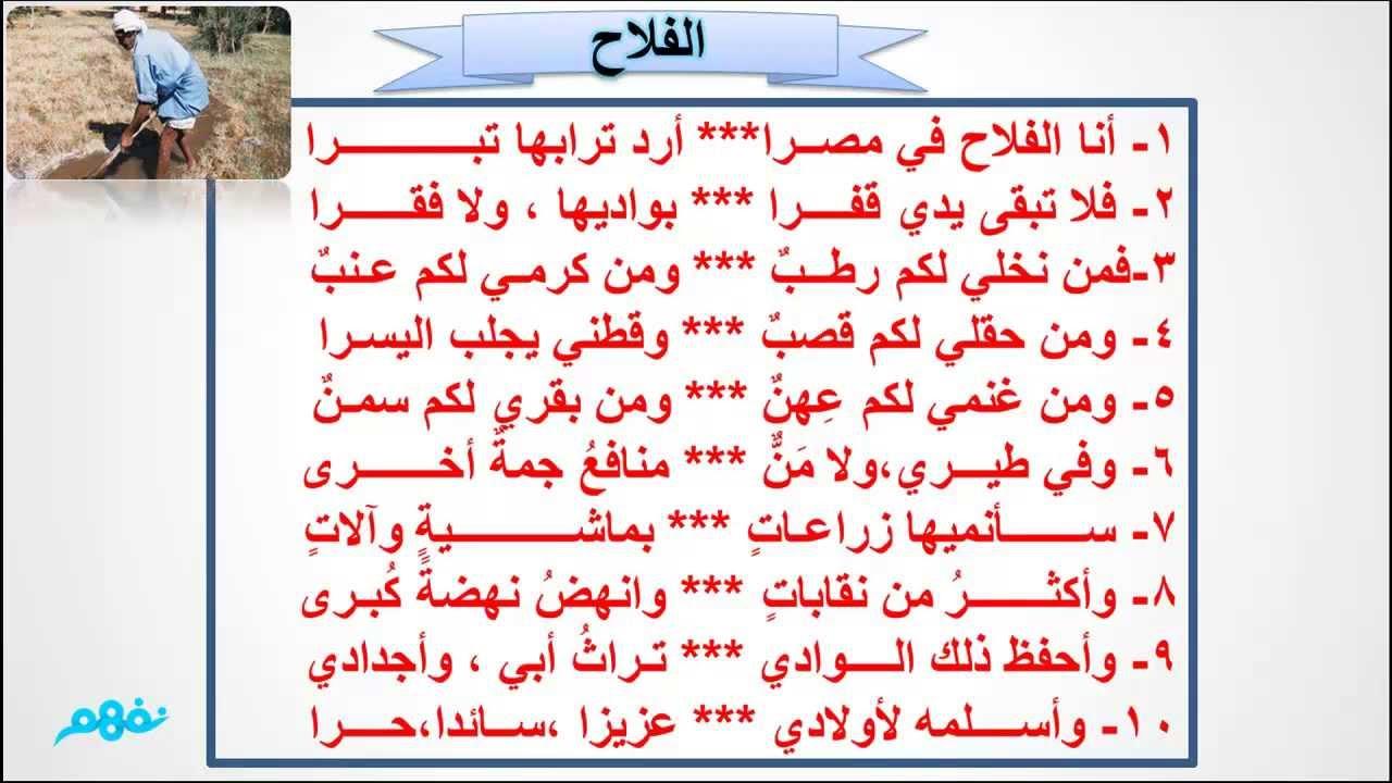 افضل كتاب كفايات لغه عربيه