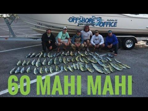 Offshore Office - 6 Dudes 60 Mahi Mahi - May 13, 2012