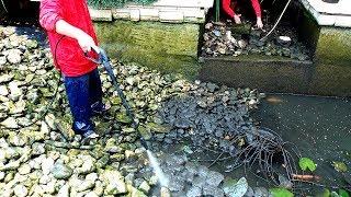 Обслуживание и очистка пруда для карпов КОИ от ила и водорослей | Koi pond Cleaning DIY(Рассчитать смету и узнать цену на очистку пруда вы можете на сайте: http://ArchiFlora.com.ua/rekonstrukcija-ochistka-i-obslujivanie-prudov-vod..., 2015-01-22T19:44:20.000Z)