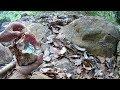 Đập bể viên đá tìm đá quý, hunting gems sapphire quartz