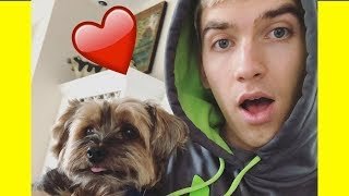 STEPHEN SHARER & OTTER SHARER | CUTEST MOMENTS ❤️🐶