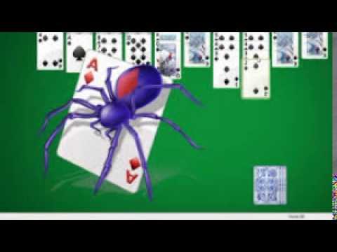 Pasjans pająk