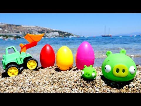 Rengarenk SÜRPRİZ yumurtalar 🐢 Angry birds domuzu yavrusu arıyor Deniz hayvanları öğren! Okul öncesi