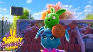 SUNNY BUNNIES - Bunny Basketball | Season 2 | Cartoons for Children