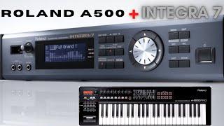 Roland A-500 Integra 7 module