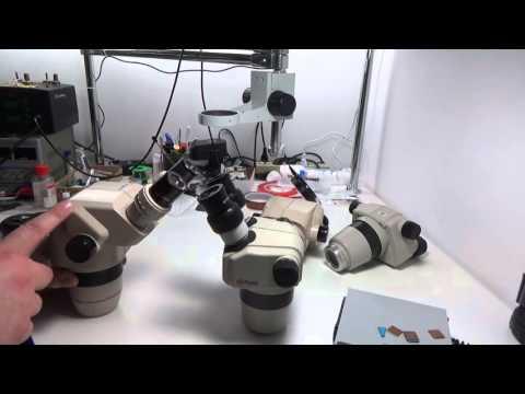 Микроскопы Nikon и Olympus, что выбрать?