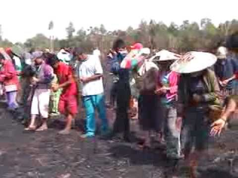 TONAU (musik pop Dayak Kalimantan TImur)