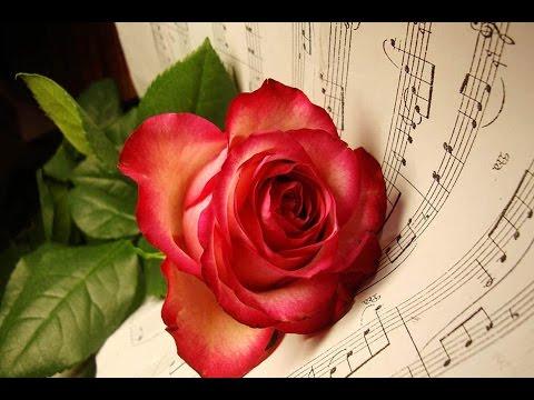 Makedonsko devojče | Makedonski rozi | Relax music