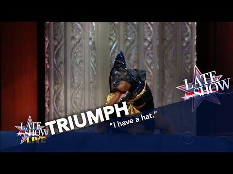 triumph the insult comic dog explains trump's win - youtube