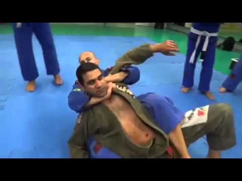jiu jitsu tecnicas faixa branca pdf