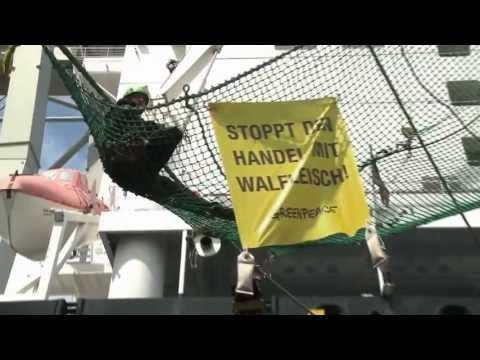 Greenpeace Whaling Action, Hamburg