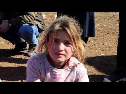 Not Alone-White Monkey in Kurdistan