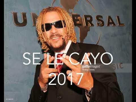 To 209 O Rosario Se Le Cayo Merengue 2017 Youtube