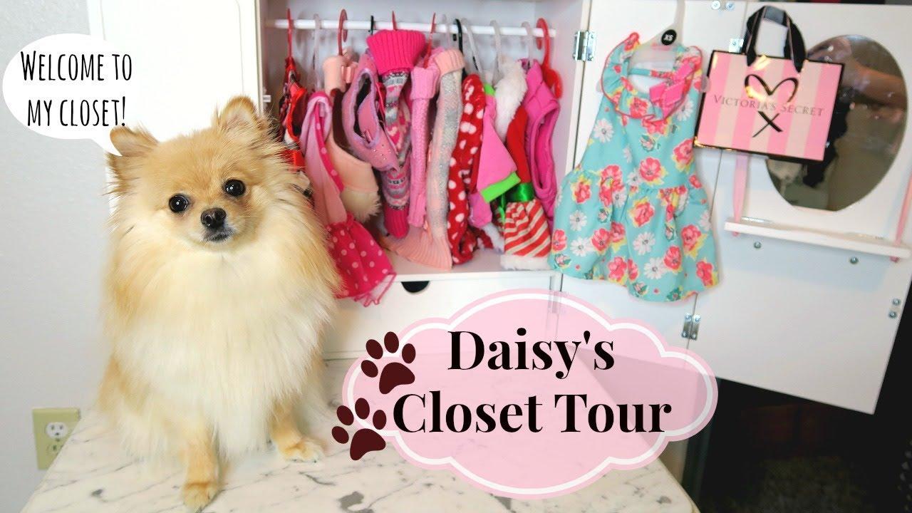 DOG CLOSET TOUR! Clothes U0026 Accessories | 2018