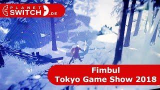 Fimbul - Interview @Tokyo Game Show 2018
