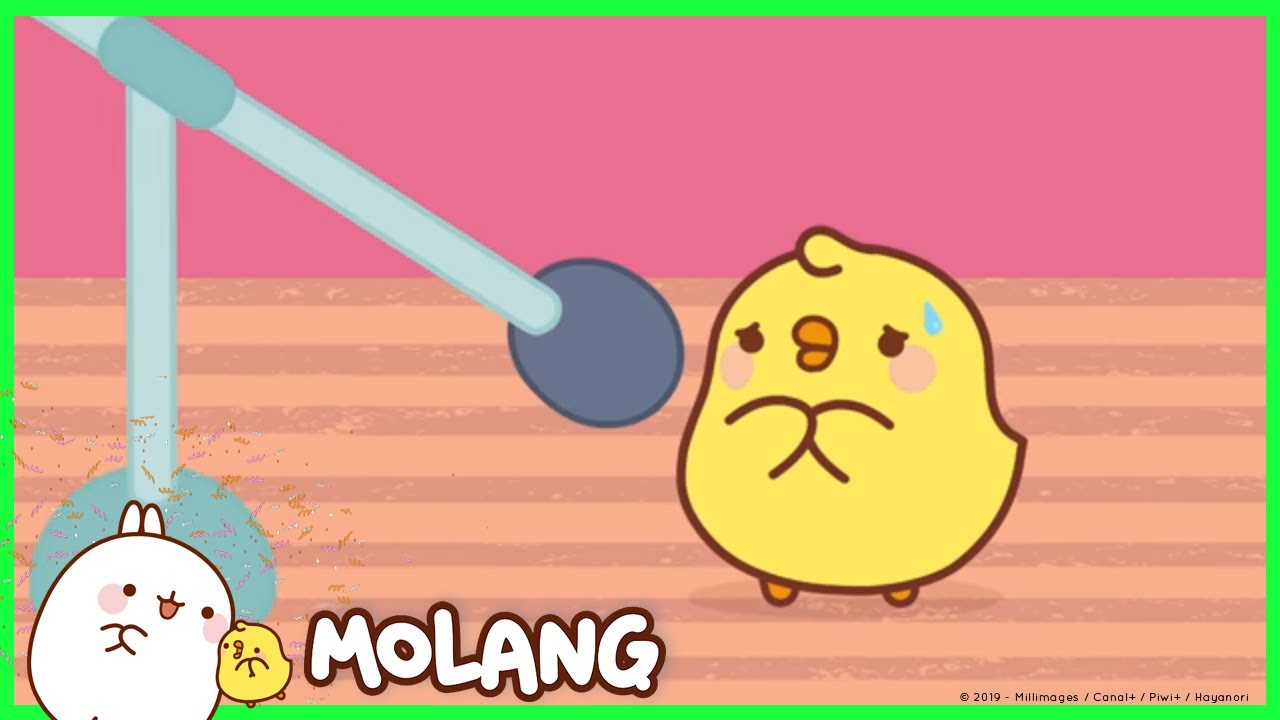 molang the stage fright cartoon for kids youtube