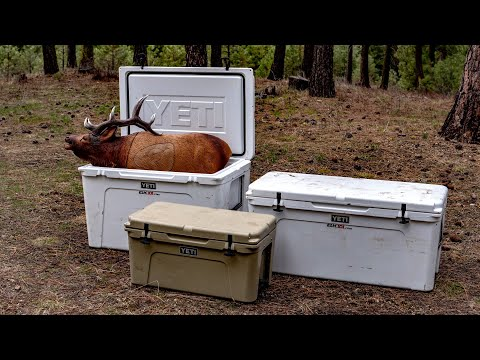 What Size Cooler for an Elk?