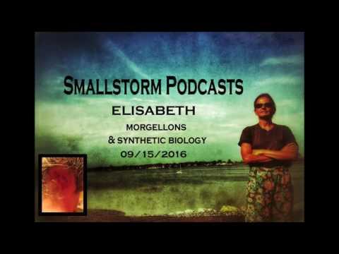 Sofia Smallstorm Interviews Elisabeth about Morgellons