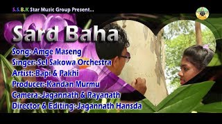 New Santali Video 2017 _ Amge Maseng _ Sard Baha Santali Video Album 2017