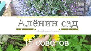 15 полезных советов для сада и огорода!