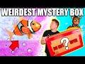 $99 WEIRDEST EBAY MYSTERY BOX 📦😱 Toys, Bubbles & More You Won't Believe!