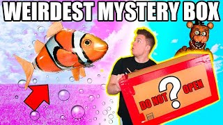 $99 WEIRDEST EBAY MYSTERY BOX 📦😱 Toys, Bubbles & More You Won't Believe!