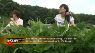 New Generation Farmers in Japan