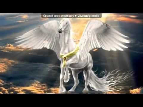 Фото лошадей - лошади в океане - YouTube
