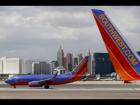 Southwest Airlines to Review Support Animal Policy After Dog Bite Incident