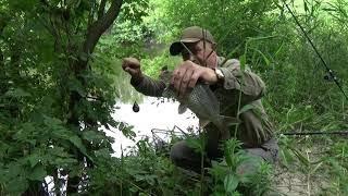 Рыбалка на малой реке на Поплавок плотва карась густера Клещи
