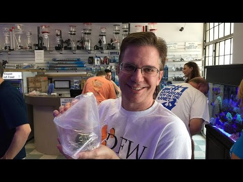 DFWMAS Bus Tour 2015: We Visited Five Local Fish Stores!