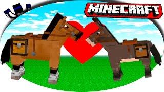Кто быстрее - Лошадь или Ослик?