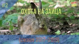 (18+) ХИТРЫЙ ЗАЯЦ (охота на зайца #2) Сезон 2017-2018...