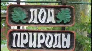 видео Музей леса