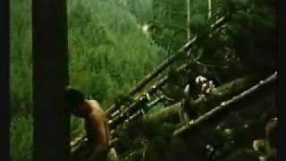 Fire Festival (1985)