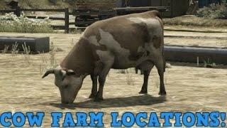 Gta 5 - 2 cow farm location