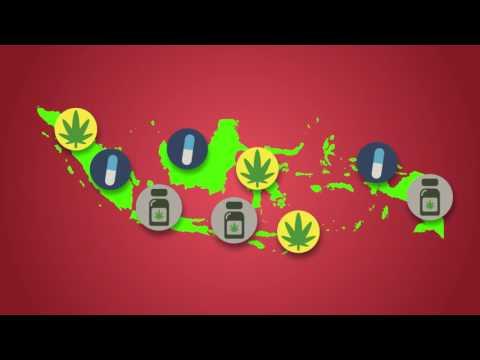 Iklan Layanan Masyarakat | Ayo Cegah Penyalahgunaan Narkoba (Firman Nurmaulana SMK TI Annisa 2)