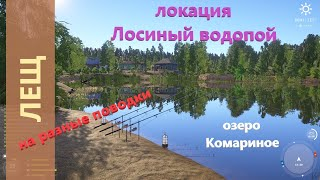 Русская рыбалка 4 озеро Комариное Лещ и крафтовые поводки Bream